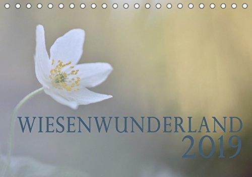 Wiesenwunderland 2019 (Tischkalender 2019 DIN A5 quer): Einheimische Wiesenblumen oder Insekten werden Dank Makroobjektiv zu Kunstwerken im ... (Monatskalender, 14 Seiten ) (CALVENDO Natur)
