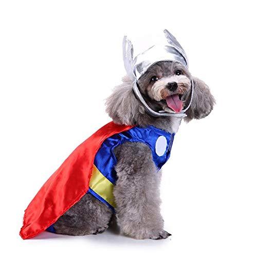 King Swell Halloween-Kostüm Thor für Haustiere, lustiges Haustier-Cosplay, Kaltes Wetter, Mäntel, Kleidung Herbstjacke, M