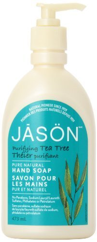 jason-pure-natural-hand-soap-purifying-tea-tree-16-ounce-by-jason-natural-cosmetics