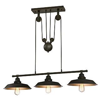 Westinghouse 6332540 Luminaire Suspendu à Poulies d'Intérieur à Trois Lampes, Verre, Bronze Huilé