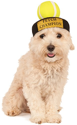 Bild: Rubies Costume Company Fetch Champion Pet Hat