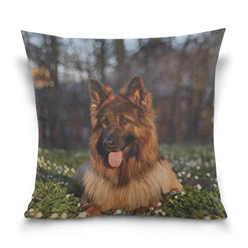 Hectwya Kissenbezug Dog Grass Sit Protruding Tongue Sofa Bed ()