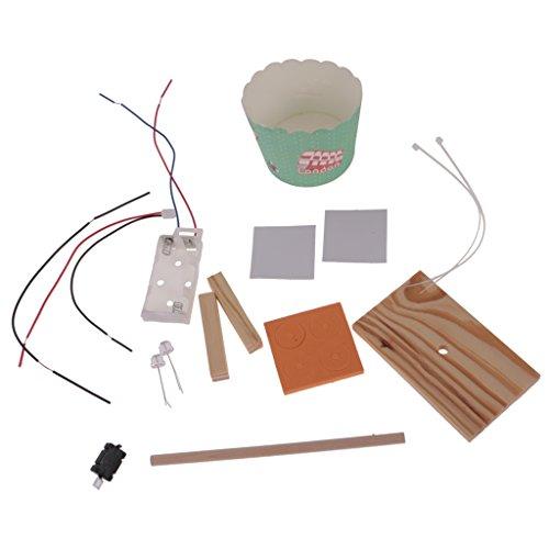 Gazechimp Kinder Diy Mini batteriebetrieben Tischlampe aus Pappbecher Montage Spielzeug Wissenschaftliches Experiment Satz Umweltschutz & Energiesparen