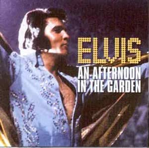Afternoon in the Garden [CASSETTE]