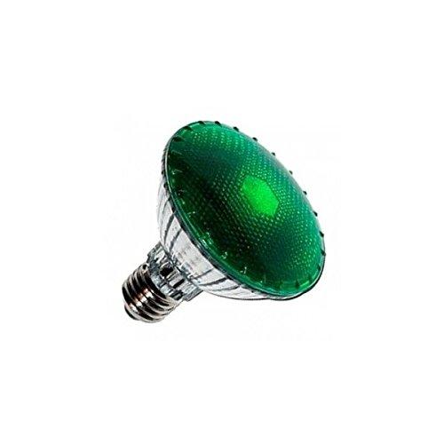 Agrolite Lampe nocturne verte DarkNight 100 W
