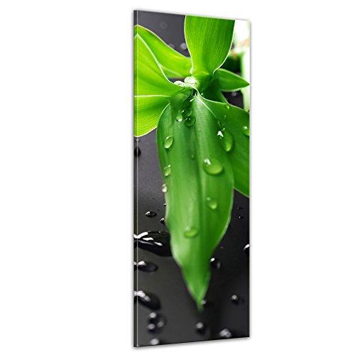 Kunstdruck - Frischer Bambus - Bild auf Leinwand - 40x120 cm einteilig - Leinwandbilder - Geist & Seele - asiatisch - Glücksbambus - Gras mit Wassertropfen