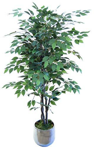 Maia Shop 1225 Ficus Stämme aus den besten Materialien, ideal für Dekoration zu Hause, künstlicher Baum (105 cm), gemischt, 150 cm