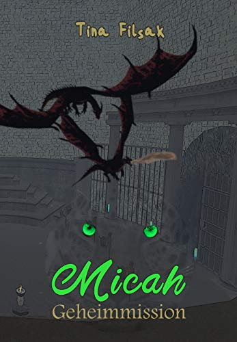 Geheimmission (Micah 18) Tin