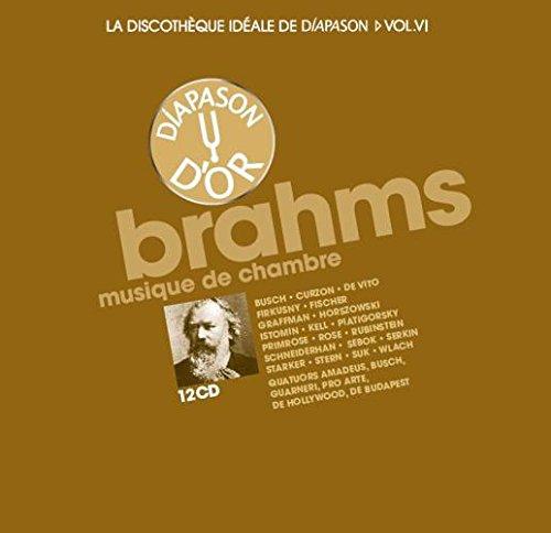 Brahms Musique De Chambre 12 CD -