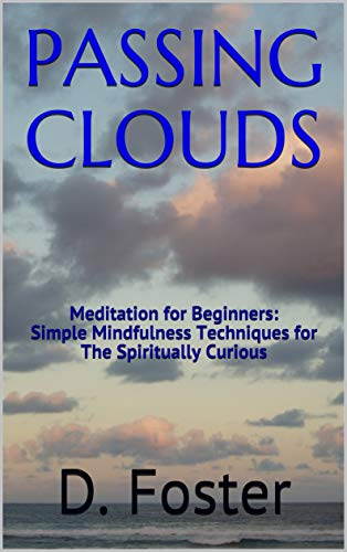 PASSING CLOUDS: Meditation for Beginners - Simple Mindfulness Techniques for The Spiritually Curious (English Edition)
