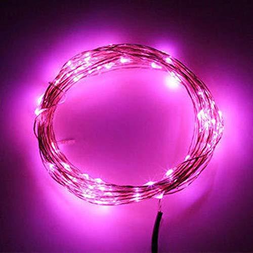 100-LED String leuchtet Power Adapter Ambiente Beleuchtung für Hochzeit Party Urlaub Weihnachtsdekoration ()