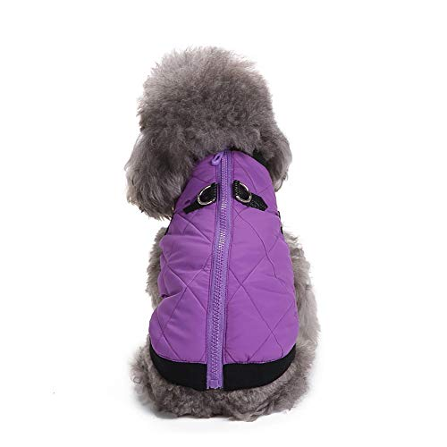 Amphia - Hund T-Shirt,Haustier Hund Reißverschluss Jacke Mantel Kleidung - Haustier Hund Katze Welpen Winter warme Kleidung Kostüm Jacke Mantel Kleid(Lila,M) -