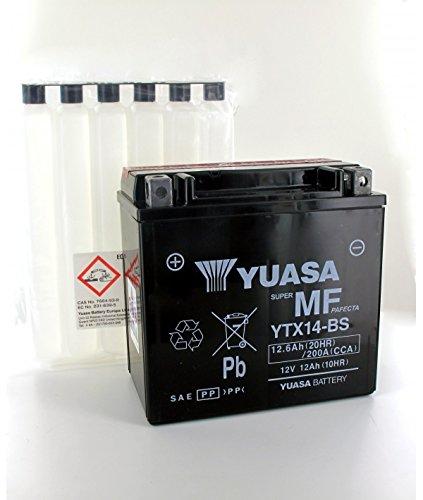 Yuasa - Piombo 12V 12.6Ah YTX14 - BS YUASA MF batteria di moto - YTX14-BS-OR