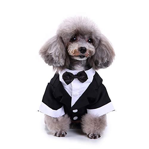 Haustier Kleidung, Hund, hübsches Hochzeitsanzug, Fliege, Hemd, Urlaub, Party, formelles Smoking Kostüm für Welpen, kleine - Welpen Bauch Baby Kostüm