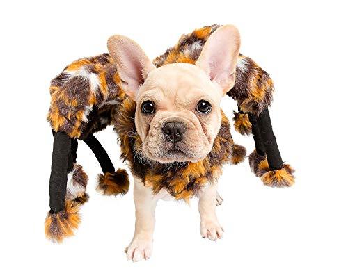 Jiedoasi Pet Scared Mutant Kostüm Spider Tarantula Hund Katze Kostüm Haustier Kleidung Pelz Beine jiedoasi (Size : - Spider Beine Kostüm Hunde