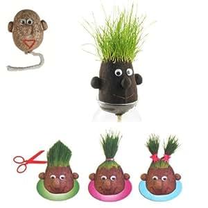 Monsieur Herbe - Grasshead - Petit modèle de 5 cm - Faites pousser ses cheveux et couper lui ! Cadeau nature original - Tête en forme de patate