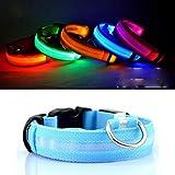 Egurs Safety LED Hundehalsband USB aufladbar Leuchtend in Dunkelblau S