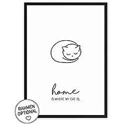 Home is where my Cat is - Kunstdruck auf wunderbarem Hahnemühle Papier DIN A4 -ohne Rahmen- schwarz-weißes Bild Poster zur Deko im Büro/Wohnung / als Geschenk Mitbringsel zum Geburtstag - Katze