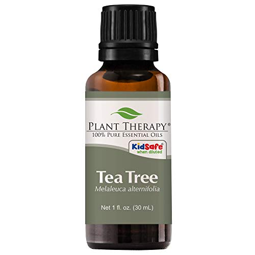 Plant Therapy Tea Tree (Melaleuca) Essential Oil 30 mL (1 oz) 100% Pure, Undiluted, Therapeutic Grade