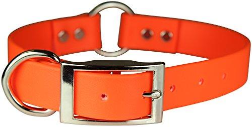 OmniPet Zeta Ring in Center mit Dee Hund Halsband