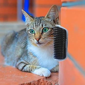 Garciaria Cat's Self Groomer Brush Pet Dispositif de Massage pour Animaux Brosse épilation Universelle Outil de toilettage Durable pour Mur d'animaux de Compagnie