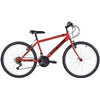 Biocycle Anexo 24
