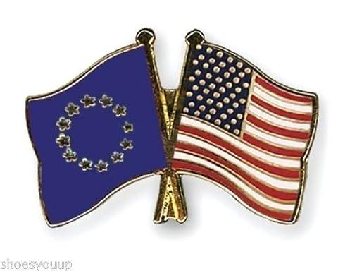 EU Européen Union & USA Drapeaux amitié Courtoisie Badge Épinglette En Émail