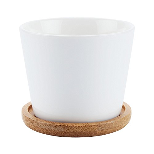 Gruppo vaso in ceramica e vassoio sottovasi in bamb for Bambu in vaso prezzo