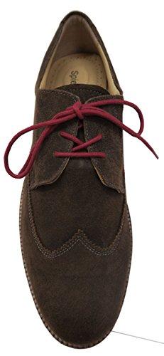 Spieth & Wensky , Sneakers Basses homme Marron - Marron