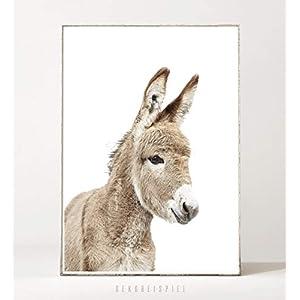 DIN A4 Kunstdruck Poster HAPPY DONKEY -ungerahmt- Portrait, Esel, Tier, Farmtier, Landleben, Kinderzimmer, Bild