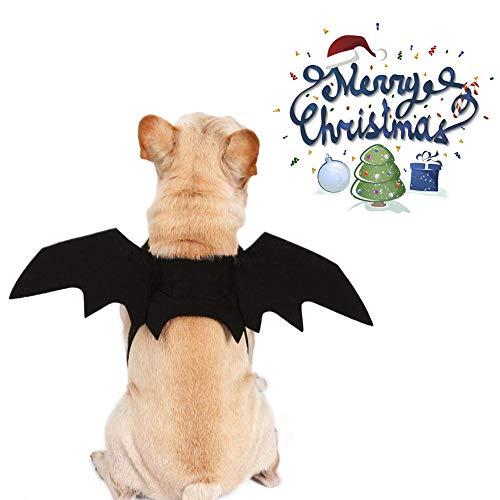 MonsterKill Fledermaus Flügel zum Hunde &Katzen,Weihnachten Haustier Fledermaus Kostüm zum Hündchen &Kitty,Vampir Fledermaus Schick Kleid Kostüm Outfit Flügel,Halloween Party (M)