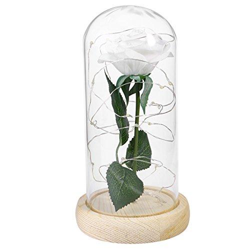 ledmomo aus Seide weiß und Licht Kette LEDs in eine Kuppel Glas rosa künstliche Rose in eine Tischleuchte Holz-Grundlage für Geschenke Valentinstag Hochzeit Jahrestag Geburtstag