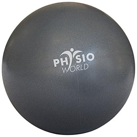 PhysioWorld Pilates Ball 8