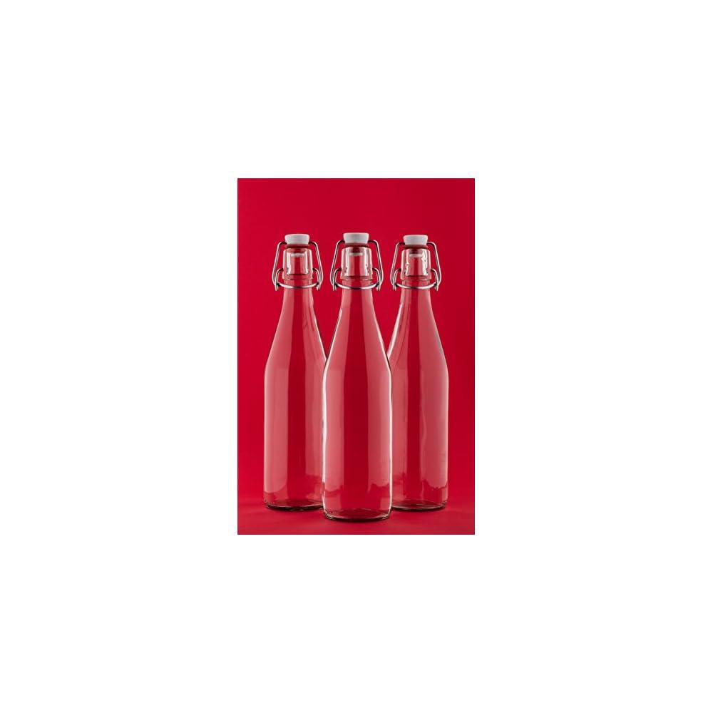 246 Oder 10 X 750ml Bgelflasche Bgelverschlussflasche Leere Glasflasche Mit Bgelverschluss Weinflasche Schnapsflasche Essig L Glasflaschen 075l Von Slkfactory