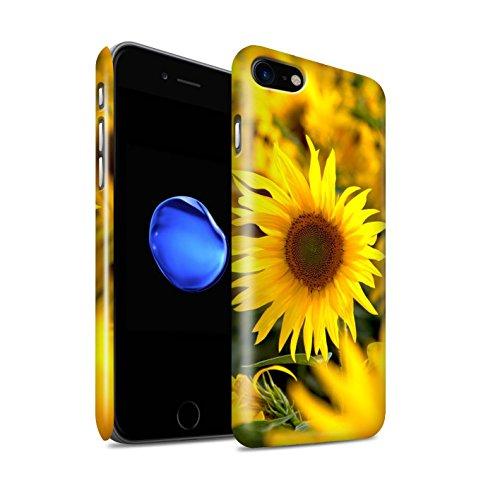 STUFF4 Glanz Snap-On Hülle / Case für Apple iPhone X/10 / Rosa Rose Muster / Blumengarten Blumen Kollektion Blumenfelder