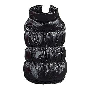 Manteau d'hiver Chaud Veste Rembourré Vêtements pou Chiot Petit Chien - Noir, M