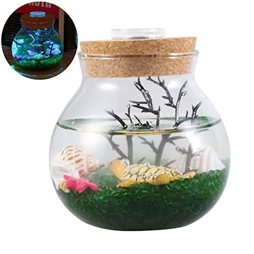 POPETPOP Kreative Micro Landschaft Eco Flasche Aquarium, Mini kleine Aquarium mit LED Nacht Farbe Lichter Tisch Dekor Geschenke - Turtle (Small Size) -