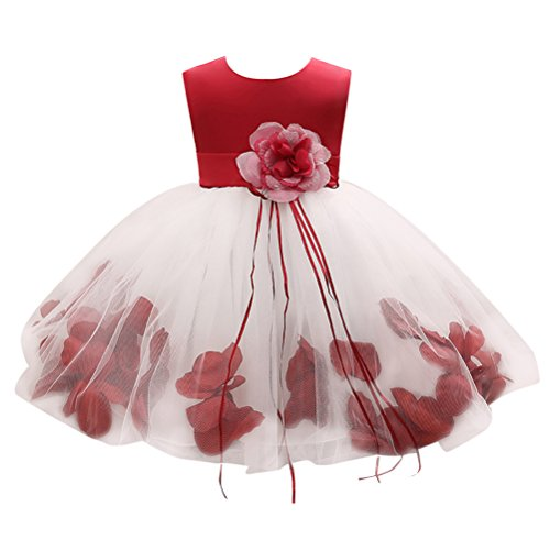 Zhhlaixing Newborn Toddler Baby Girls Sleeveless Big Flower Princess Party Dress Tulle Petals Formal Wedding Bridesmaid Christening Dress Perfect Birthday Gift for 0-24 Months Teen Formale Kleider