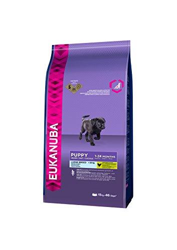 Eukanuba Puppy Large Breed Trockenfutter (für Welpen großer Hunderassen, Premiumnahrung mit Huhn), 15 kg Beutel - 3