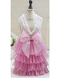 Amazon.it  Vestiti Da Principessa Per Bambina - Includi non disponibili   Abbigliamento b53dae8763b