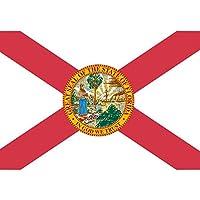 AzuNaisi Praktische Florida Flagge Durable US Staats Flagge tragbares Metall Grommet Flagge für Festival Veranstaltungen |3 * 5FT Home dekor