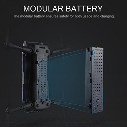 Xshuai 2 stücke 3,7 V 500 MAH große kapazität Lipo Batterie für Eachine E56 JJRC H47 RC Quadcopter + USB Ladung (Schwarz)