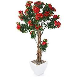 Closer To Nature Flor de interior (rododendro), color rojo