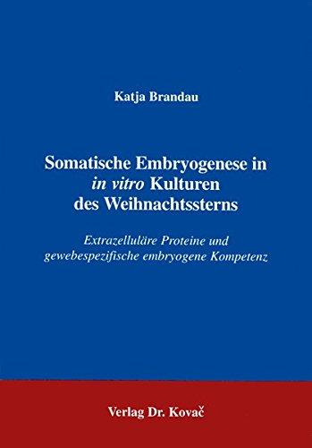 Somatische Embryogenese in in vitro Kulturen des Weihnachtssterns . Extrazelluläre Proteine und gewebespezifische embryogene Kompetenz