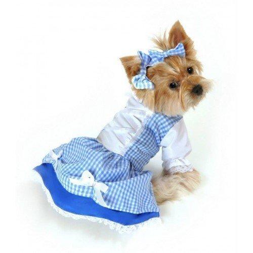 Outfit Zauberer (Mädchen Haustier Hund Katze Dorothy Zauberer von Oz Halloween Kostüm Kleid Outfit Kleidung -)