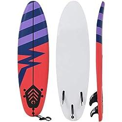 Festnight- Planche de Surf Motif à Rayures pour Débutants Adultes et Enfants 170 cm