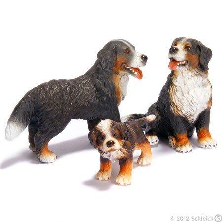 Preisvergleich Produktbild Schleich kt-20090 Berner Sennenhund-Familie 16339, 16316, 16344 (3Teilig)