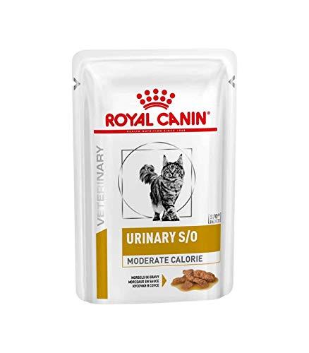 ROYAL CANIN Urinary S/O Moderate Cal. Katze (Fleischstücke) - 12 x 85g