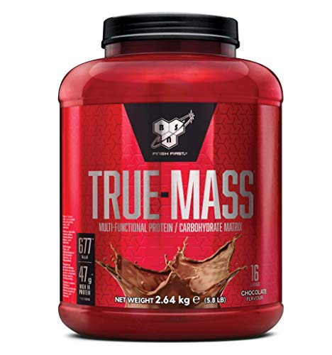 BSN True Mass Weight Gainer