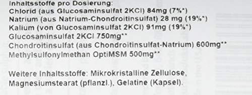 Doctor's Best, Glucosamine Chondroitin MSM, 360 Kapseln – hochdosiert mit OptiMSM, gentechnikfrei